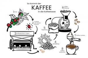 Den besten Kaffee in deiner Kaffeetasse